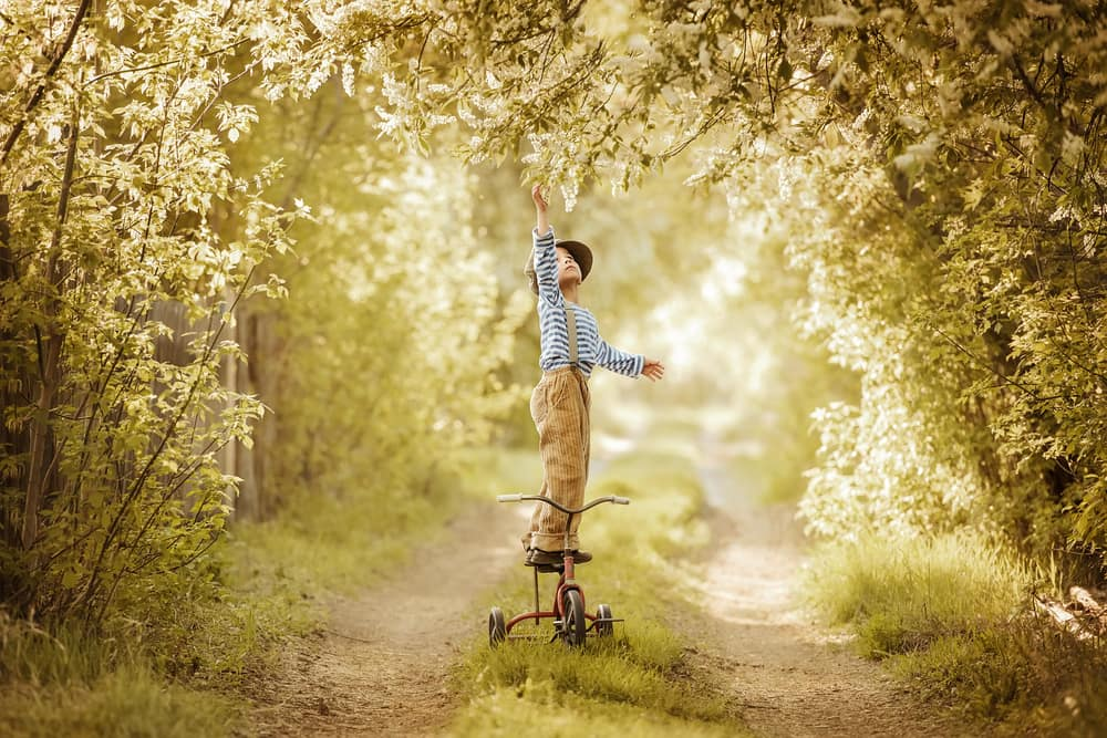 boy-on-tricycle-reaching-tree.jpg